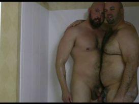2 דובים גדולים ושעירים